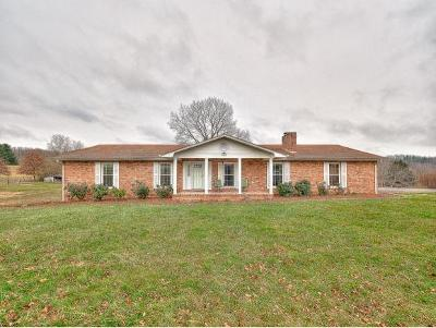 Bristol Single Family Home For Sale: 4120 Old Jonesboro Rd.