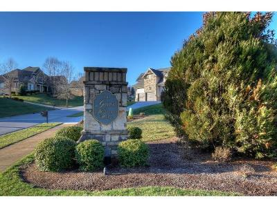 Johnson City Residential Lots & Land For Sale: 2994 Highland Grove Drive