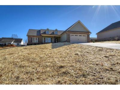 Jonesborough Single Family Home For Sale: 185 Dean Archer Rd