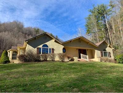 Single Family Home For Sale: 2012 Rice Creek Road
