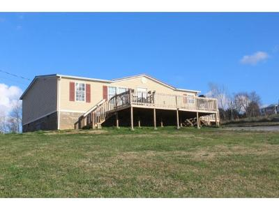 Greeneville Single Family Home For Sale: 85 Haney Hill Road