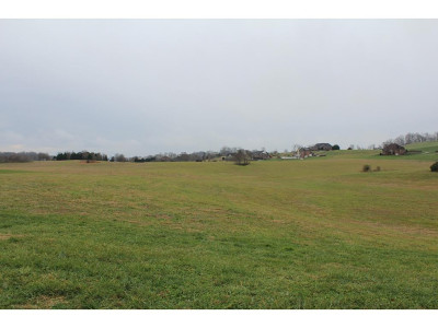 Greene County Residential Lots & Land For Sale: LT 2 Waterstone Circle
