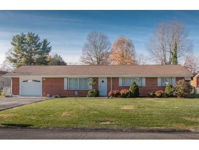 Bristol VA Single Family Home For Sale: $149,900