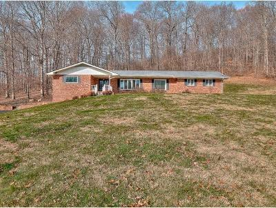 Fall Branch Single Family Home For Sale: 594 Hwy 93