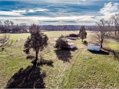 Greene County Residential Lots & Land For Sale: 255 Baileyton Main Street