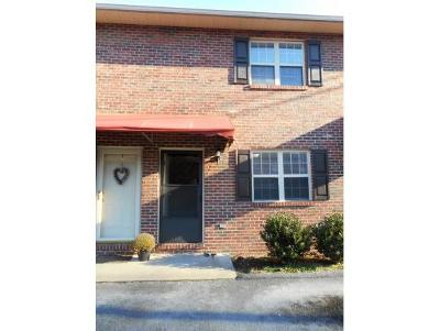 Johnson City Condo/Townhouse For Sale: 405 Ketron Ln #2