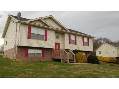 Jonesborough Single Family Home For Sale: 297 Old Embreeville Rd
