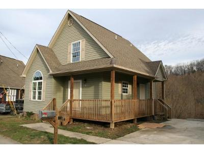 Johnson City Single Family Home For Sale: 354 Preservation Cr.