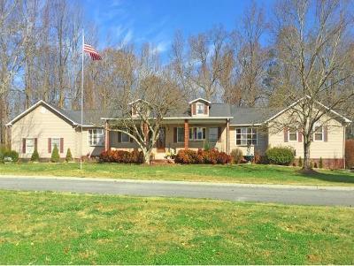 Sevierville Single Family Home For Sale: 236 Estele Drive