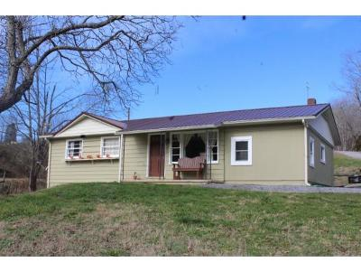 Rogersville Single Family Home For Sale: 307 Light Cemetery Road