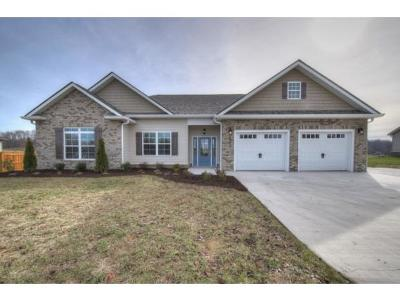 Jonesborough Single Family Home For Sale: 1292 Harmony Road
