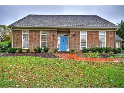 Greeneville Single Family Home For Sale: 138 Magnolia Dr.