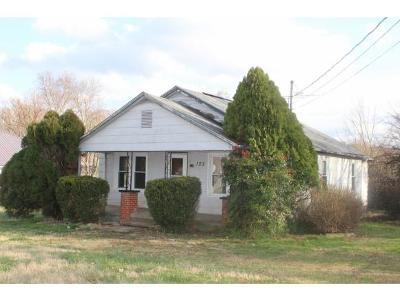 Greeneville Single Family Home For Sale: 125 Debusk Road