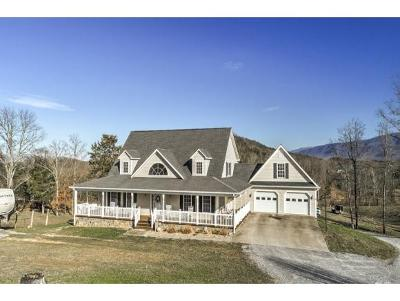 Greeneville Single Family Home For Sale: 935 Dixie Rd.