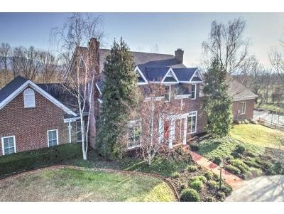 Greeneville Single Family Home For Sale: 124 Magnolia Dr.