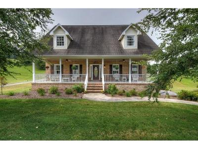 Jonesborough Single Family Home For Sale: 251 Hales Road
