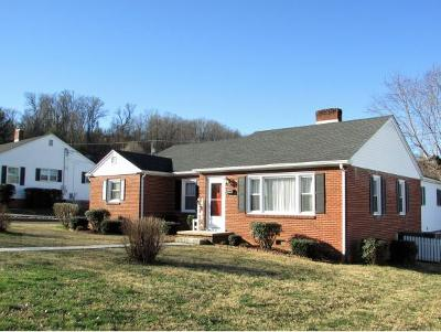 Elizabethton Single Family Home For Sale: 313 Paty Place
