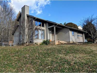 Single Family Home For Sale: 303 Huckleberry Rd