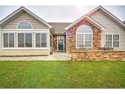 Johnson City Condo/Townhouse For Sale: 379 Villa View Point #379