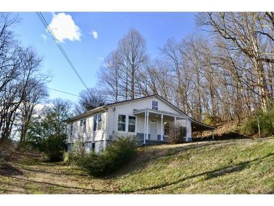 Kingsport Single Family Home For Sale: 309 Highview Avenue