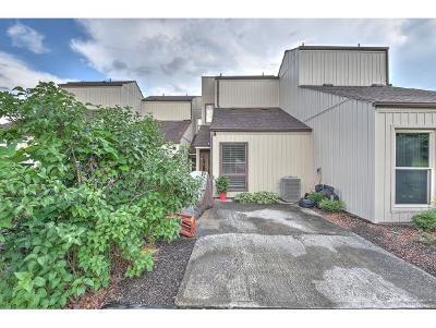 Blountville Condo/Townhouse For Sale: 780 Hamilton Road #M3