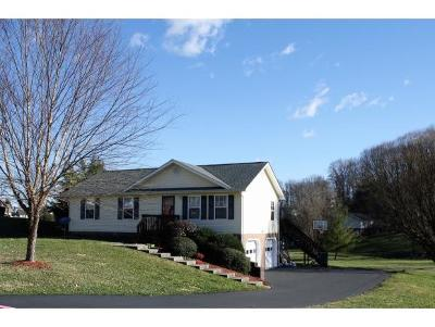 Jonesborough Single Family Home For Sale: 219 Maple Ridge