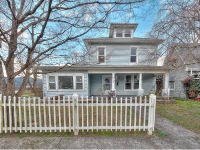 Erwin Single Family Home For Sale: 419 S Main Ave