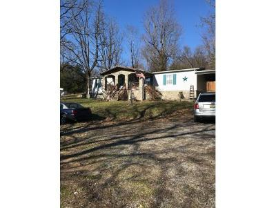 Johnson City Single Family Home For Sale: 1212 E. Lakeview