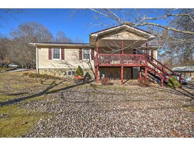 Rogersville Single Family Home For Sale: 306 Holston Terrace