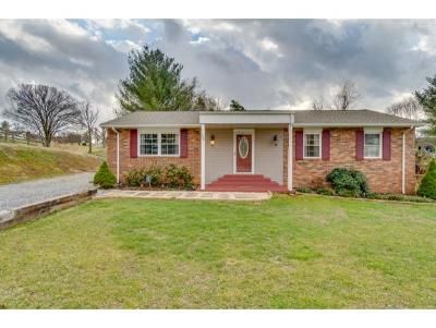 Kingsport Single Family Home For Sale: 788 Liberty Drive