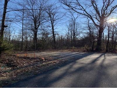 Greene County Residential Lots & Land For Sale: 327 Panoramic View Dr