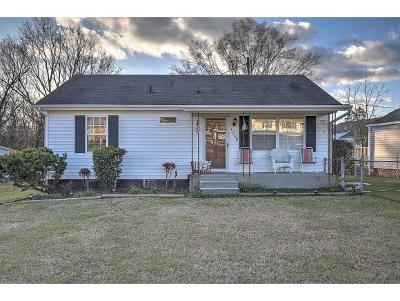 Kingsport Single Family Home For Sale: 1209 Garden Dr