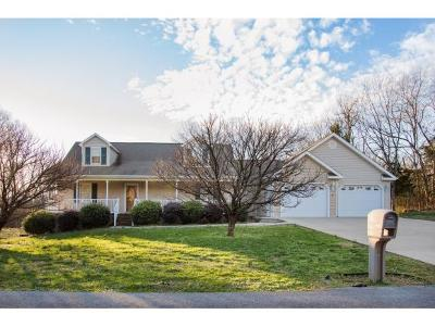 Greeneville Single Family Home For Sale: 740 Cartwheel Rd.