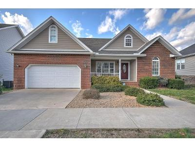Kingsport Single Family Home For Sale: 1508 Polo Fields Place