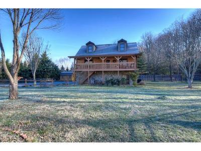 Johnson City Single Family Home For Sale: 157 Warrior Lane