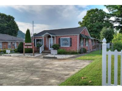 Elizabethton Single Family Home For Sale: 704 3rd Street