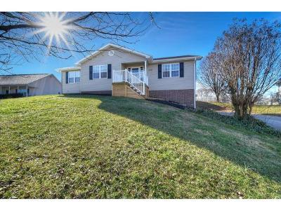 Jonesborough Single Family Home For Sale: 208 Pine Bark Drive