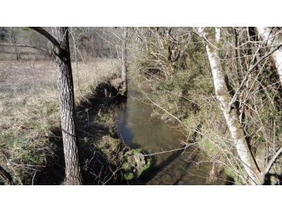 Rogersville TN Residential Lots & Land For Sale: $62,000