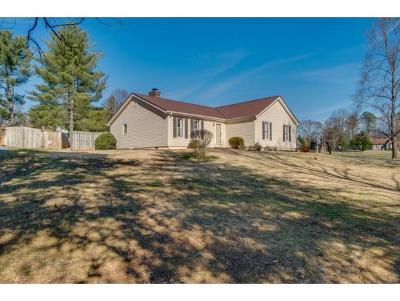 Johnson City TN Single Family Home For Sale: $169,900