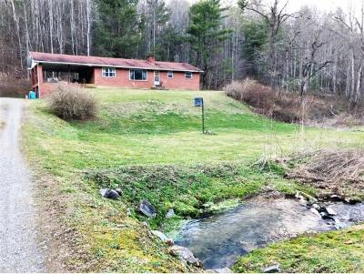 Cocke County Single Family Home For Sale: 3676 Green Corner Rd
