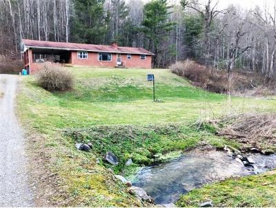 Single Family Home For Sale: 3676 Green Corner Rd