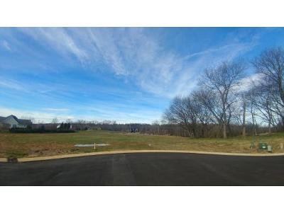 Johnson City Residential Lots & Land For Sale: Lot 18 Conestoga Pass