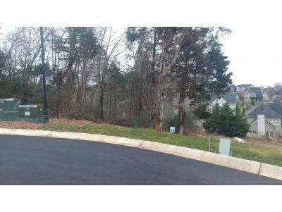 Washington-Tn County Residential Lots & Land For Sale: Lot 28 Conestoga Pass