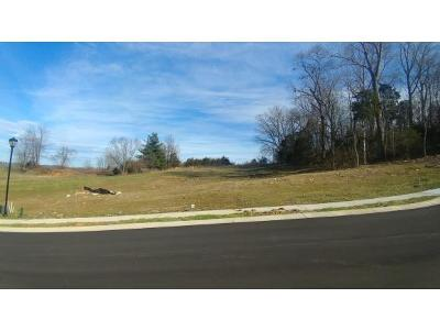 Johnson City Residential Lots & Land For Sale: Lot 31 Conestoga Pass