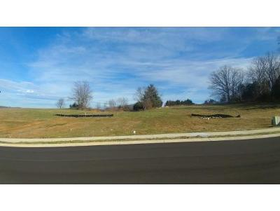 Johnson City Residential Lots & Land For Sale: Lot 32 Conestoga Pass