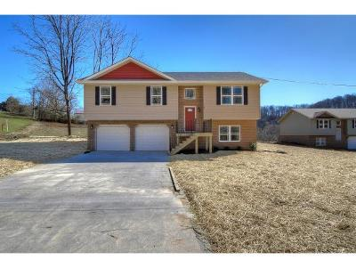 Kingsport Single Family Home For Sale: 587 Harr Town Rd