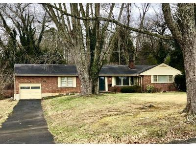 Bristol VA Single Family Home For Sale: $119,900