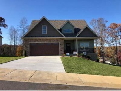 Kingsport Single Family Home For Sale: 3062 Calton Hill
