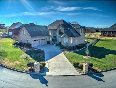 Piney Flats Single Family Home For Sale: 205 Cross Anchor Pl
