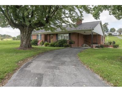 Abingdon Single Family Home For Sale: 27181 Lee Highway